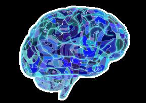 brain-951874_1280